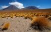 argentinien-chile-46